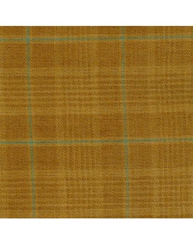 Fabric #73 Tea Dyed