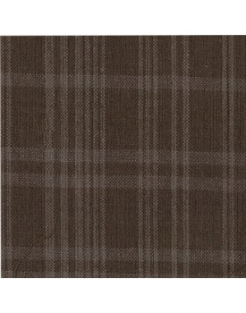 Fabric #59 Tea Dyed